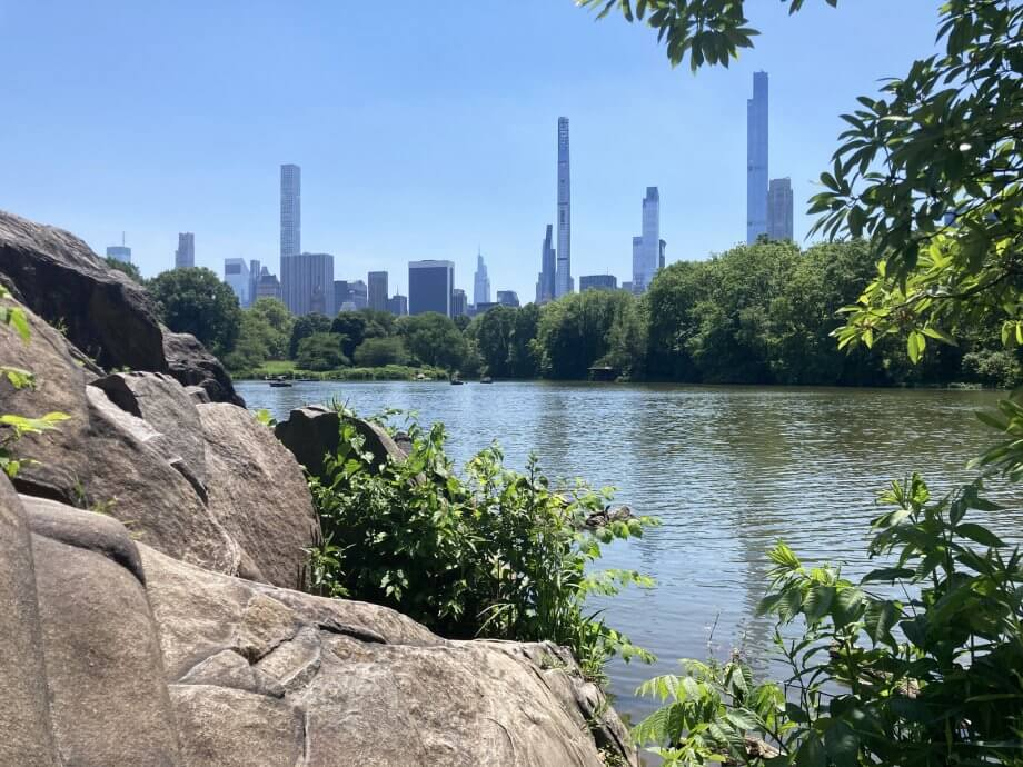 Central Park from the West side, one day in New York City with Kids