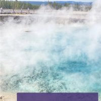 A Guide to Yellowstone with Kids: A 3-Day Itinerary