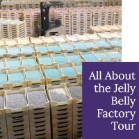 All About the Jelly Belly Factory Tour